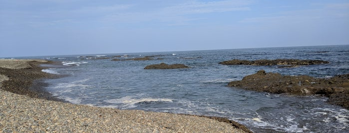 大洗海岸の礫浜 is one of 茨城県北ジオパークのジオサイト.