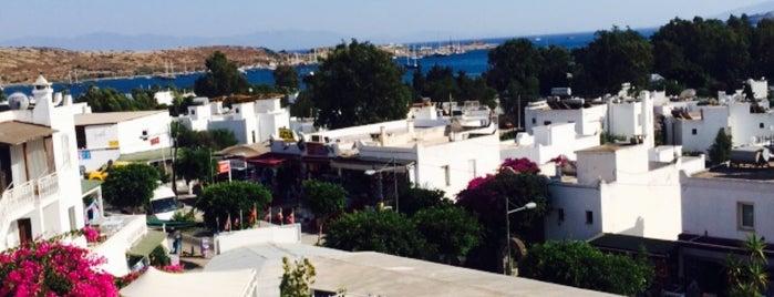 Bodrum Nova Hotels Beach Clup&Spa is one of Murat : понравившиеся места.