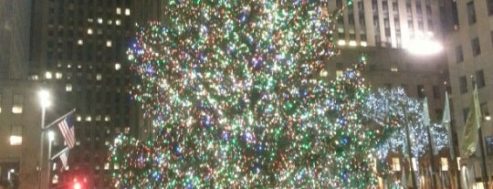 Rockefeller Center Christmas Tree is one of NY.