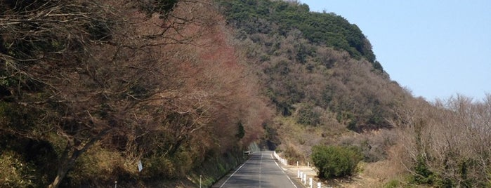 屋島ドライブウェイ ミステリーゾーン is one of 屋島 (Yashima).