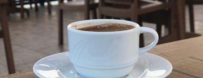 Akyarlar sedir cafe is one of Bodrum.