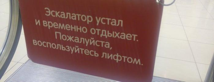 ТРЦ «Мега-Антошка» is one of สถานที่ที่ Elizabeth ถูกใจ.