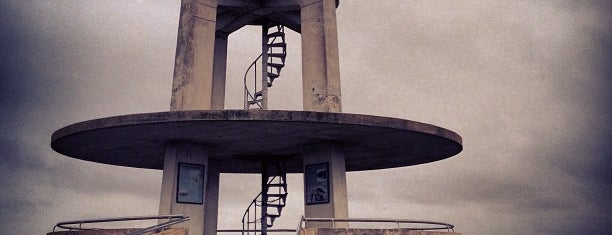 Shark Valley Observation Tower is one of Tatil.
