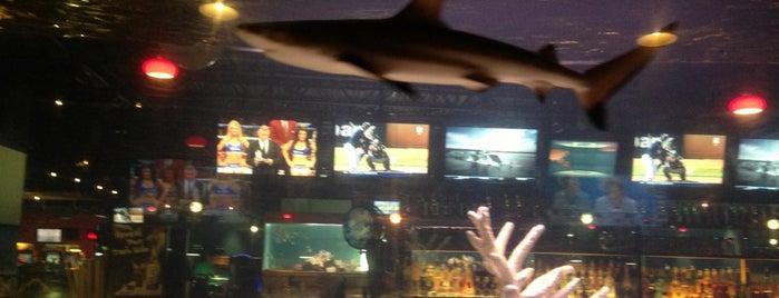 Shark Club is one of Pinball Destinations.