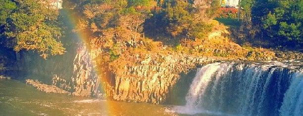 Haruru Falls is one of Nuova Zelanda.