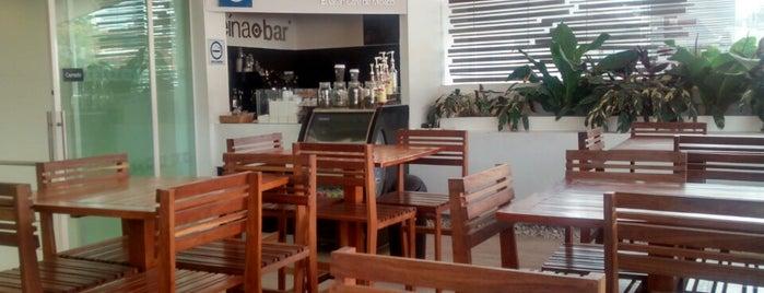 Café Punta del Cielo is one of Ignacio'nun Beğendiği Mekanlar.