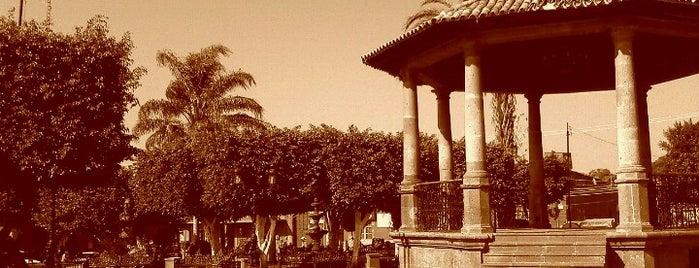 Plaza Principal Magdalena Jalisco is one of Orte, die Everardo gefallen.