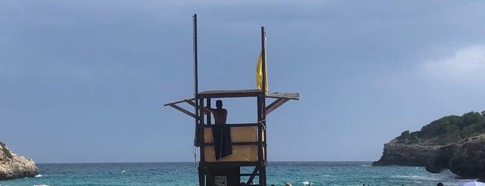 Cala Anguila is one of Orte, die Francisco gefallen.