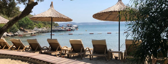 Iasos Beach Club Bodrum is one of Posti che sono piaciuti a R. Gizem.