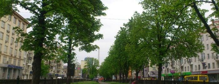 Аллея По Проспекту Победы is one of Orte, die Ярослав gefallen.