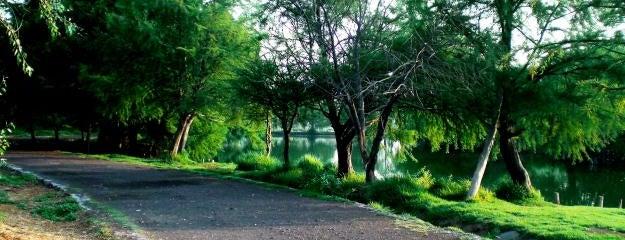 Parque Ecológico Xochimilco is one of Los mejores lugares para correr en el DF.