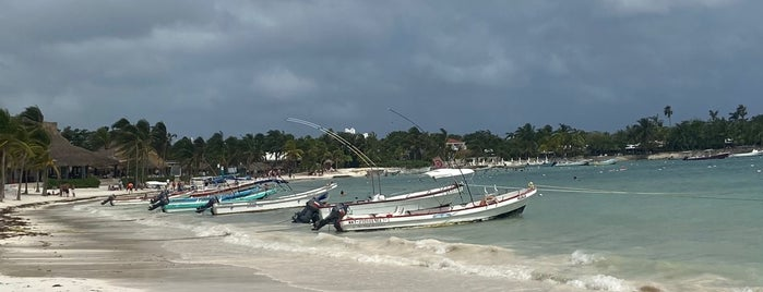 Playa Akumal is one of Playa Del Carmen.