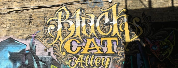 Black Cat Alley is one of MKE.