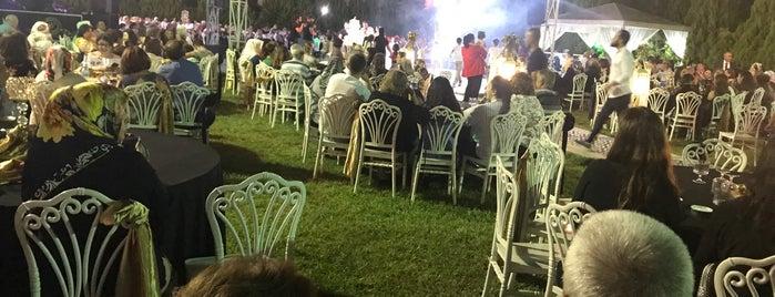 Gonca Kır Düğün Salonu is one of Locais curtidos por Kadir.