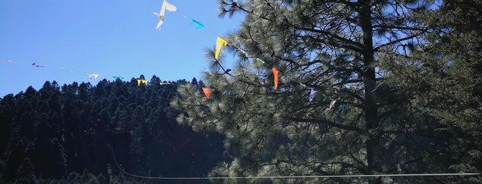 Tirolesa Los Manantiales is one of Visitados.