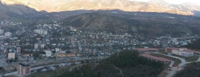 Ardanuç Çarşı is one of Artvin Rehberi.