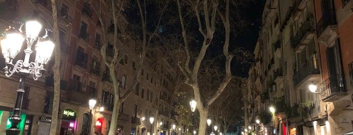 Corner is one of Barcalona.