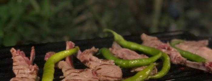 YALCIN BBQ RESTAURANT KAYA KOY is one of Kas.