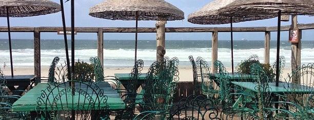 Los Pelicanos is one of Baja.