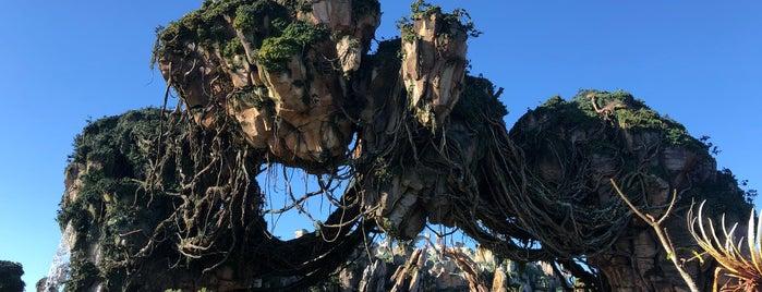 Pandora - The World of Avatar is one of สถานที่ที่ gary ถูกใจ.
