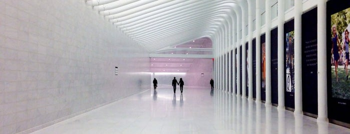 World Trade Center Transportation Hub (The Oculus) is one of NYC.