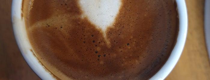 Gloria Jean's Coffees is one of Lugares favoritos de Sarper.