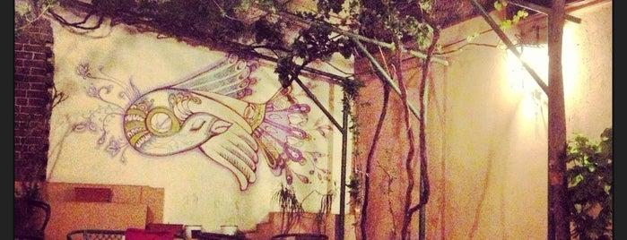 Bohemia Tea House is one of P.