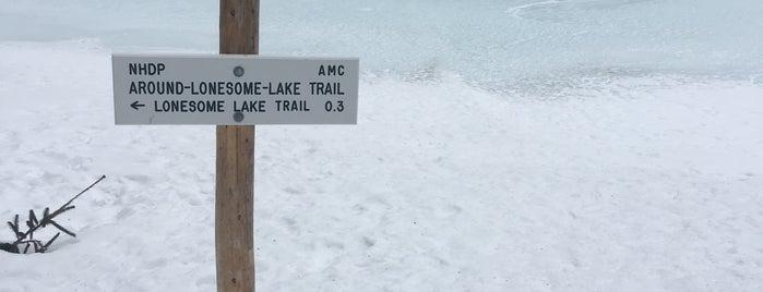 AMC Lonesome Lake Hut is one of Orte, die Heidi gefallen.