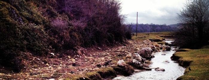 Karagöl Yaylası is one of Sakaryanın Kıyısı Köşesi.