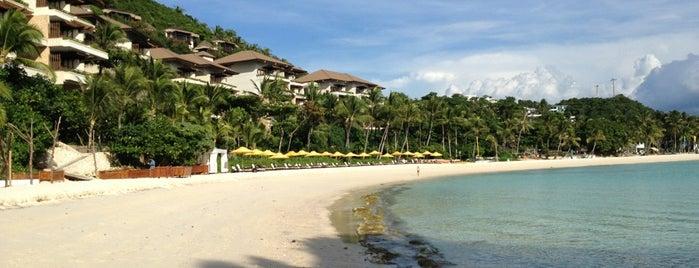 Punta Bunga Beach is one of สถานที่ที่บันทึกไว้ของ Aysel.