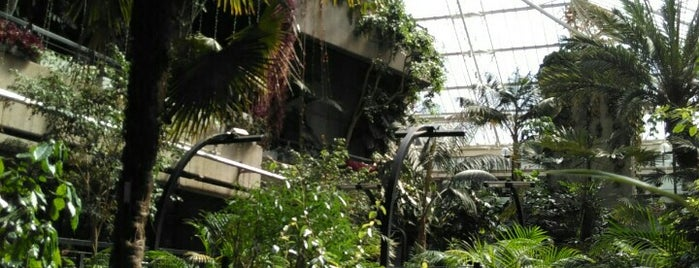 Barbican Conservatory is one of Serres et verrières🌿.