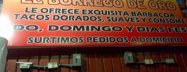 El Borrego de Oro is one of Locais salvos de Octavio.