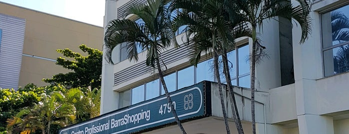 Centro Profissional BarraShopping is one of Locais curtidos por Marcello Pereira.