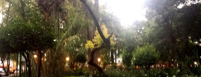 Parque España is one of CDMX.