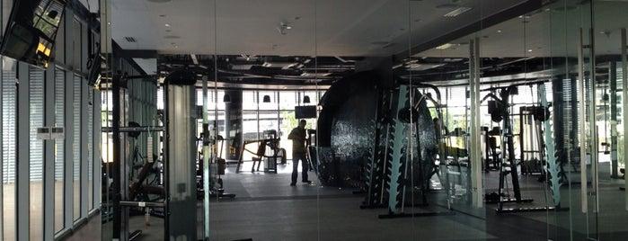 Paris Beach Club Gym & Studio is one of Azure Urban Resort Residences.