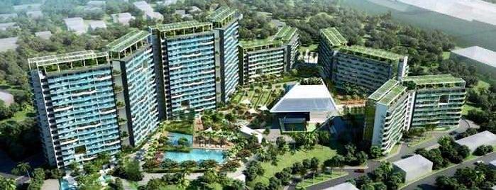 Quezon Tower is one of Century Properties.