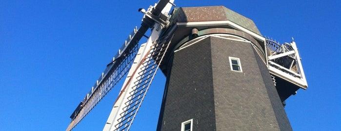 Murphy Windmill is one of San Francisco, CA Spots.
