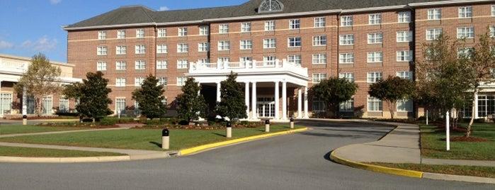 Hilton Garden Inn Suffolk is one of Trips.