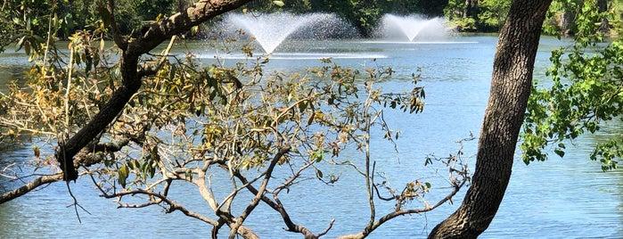 Audubon Park is one of Lugares favoritos de Jason.