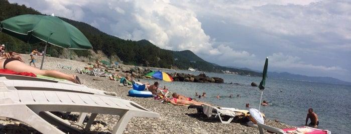 пляж зеленая долина is one of Lugares favoritos de Анастасия.