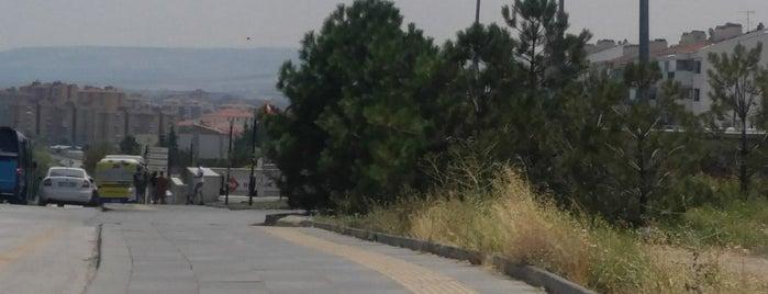 Botanik Metro İstasyonu (M3) is one of Ankara.