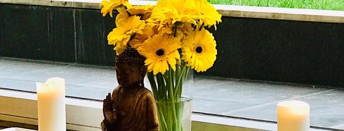 Cihangir Yoga Cadde is one of Merve: сохраненные места.