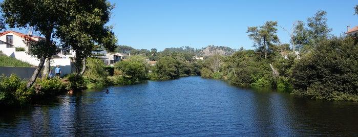Rio Neiva is one of ~ curiosités /UK|FR|PT|etc.