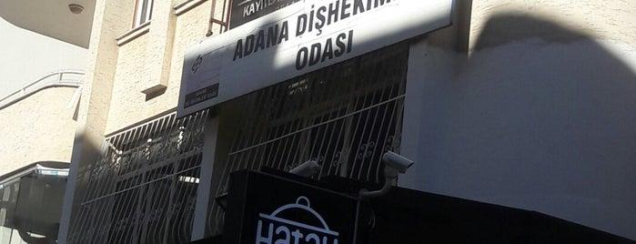 Adana Diş Hekimleri Odası is one of Orte, die Faruk gefallen.