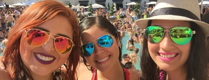 Wet Republic Ultra Pool is one of Locais curtidos por Cristina.