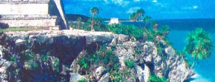 สถานที่ที่ João Paulo ถูกใจ