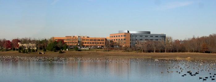 RWJ University Hospital Hamilton is one of WORK.