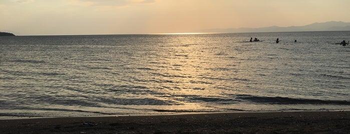 Altınyol Koyu is one of Balıkesir Plajları.