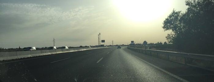 Autopista del V Centenario is one of สถานที่ที่ Alexandre ถูกใจ.
