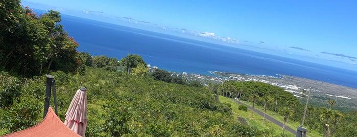 UCC UESHIMA COFFEE HAWAII is one of Hawai'i.